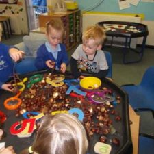 Conker counting