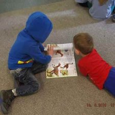 We love to look at books